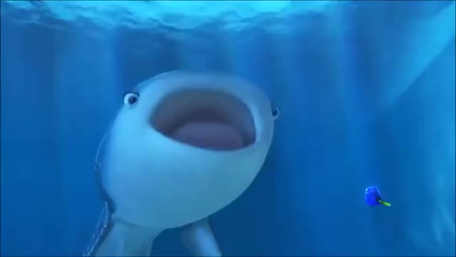Watch and share Finding Dory Movie GIFs and Finding Dory 2016 GIFs by micaheljones on Gfycat