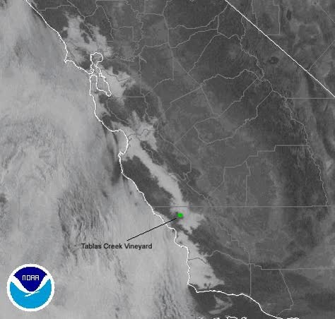 Watch and share Fog Rolling Up Salinas GIFs on Gfycat