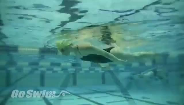 Watch and share Swimming GIFs on Gfycat