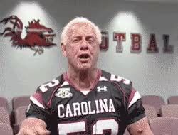 Watch Hootie and the Blowfish (Gamecock grads) Dale Earnhardt Jr. Ric Flair. GIF on Gfycat. Discover more related GIFs on Gfycat