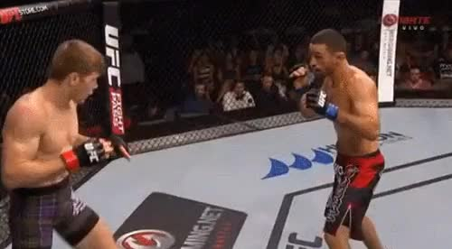 Watch and share Mma GIFs by mmabyneko on Gfycat