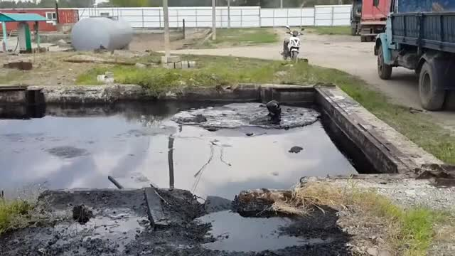 Watch and share Oil GIFs on Gfycat
