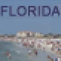 Watch and share Florida Beach Icon GIFs on Gfycat