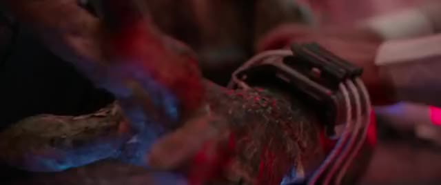 Watch and share The Predator GIFs by Predator on Gfycat