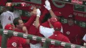 Cincinnati Reds GIFs