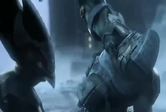 bungie, halo, The army GIFs