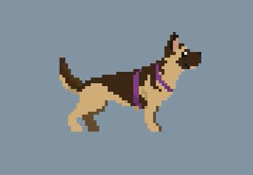 Watch German Shepherd breed added GIF on Gfycat. Discover more related GIFs on Gfycat