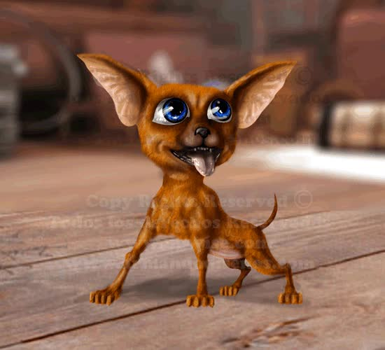 Watch and share Chihuahua Animated GIF GIFs on Gfycat