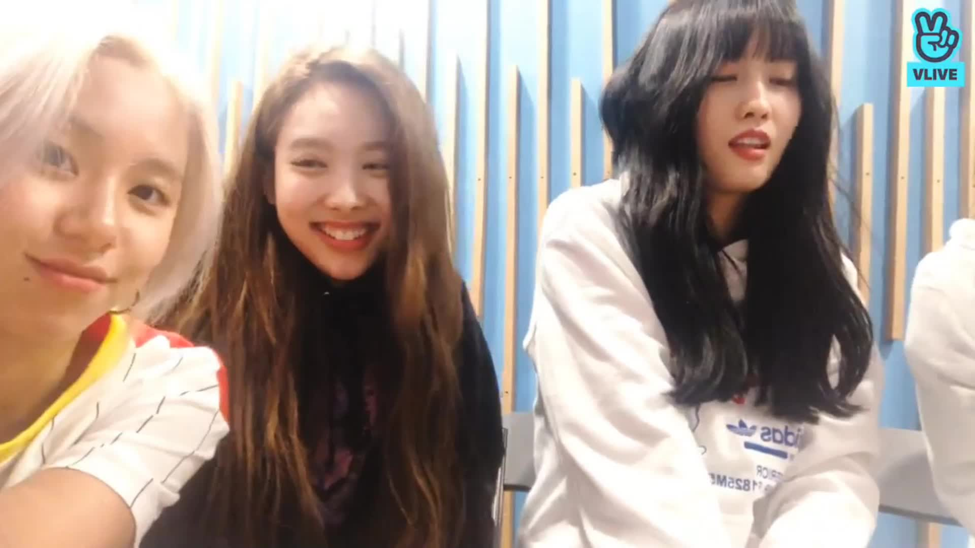 bless you, chaeyoung, momo, nayeon, sneeze, twice, Momo sneeze GIFs