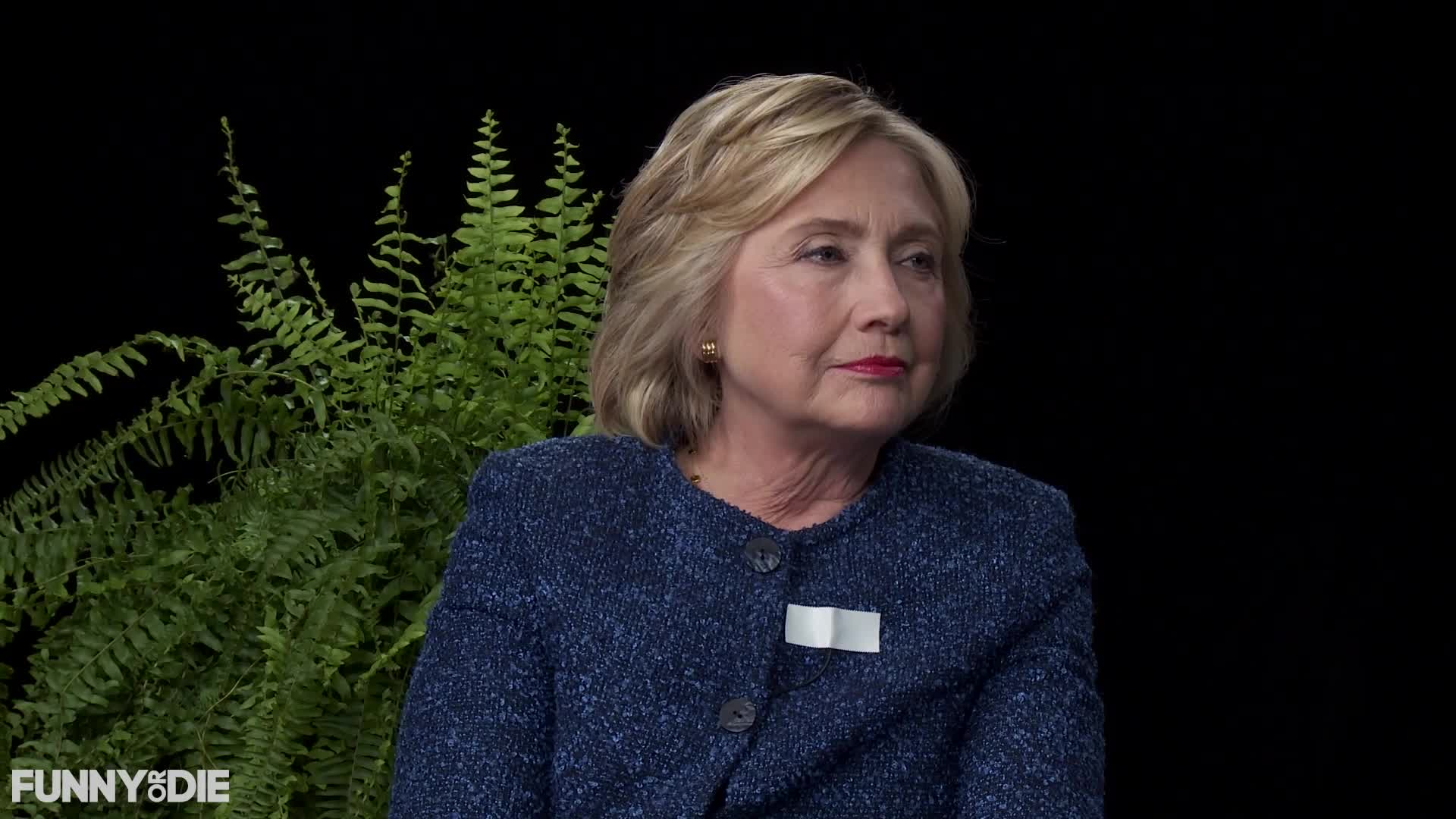 between two ferns, between2ferns, betweentwoferns, fod, funny or die, hillary clinton, hillaryclinton, zach galifianakis, Hillary Clinton Nods - Between Two Ferns with Hillary Clinton GIFs