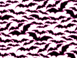 Watch and share Bats GIFs on Gfycat