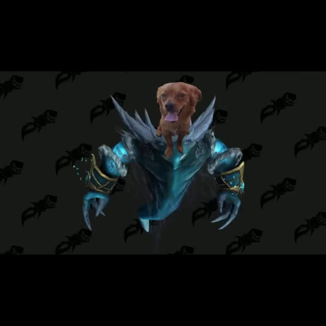 Watch and share Even Copper Has A Jaina Mount Omegalul GIFs by polskaa on Gfycat