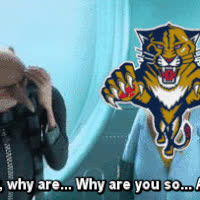 Panthers Suck GIFs