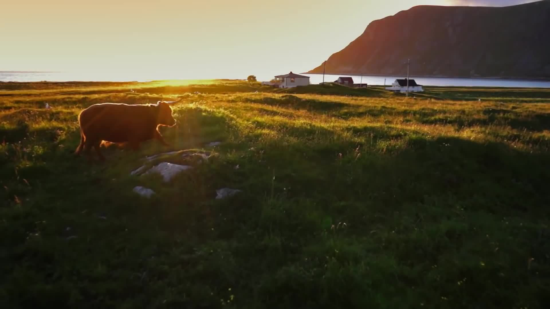 aerial, earthgifs, norway, Norway nature 2015 - Aerial drone video GIFs
