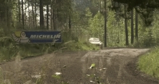 Cars, Finland, Gif, Motorsport, Rally, Rallye, Sport, WRC, World Rally Championship,  Finland 2015 GIFs