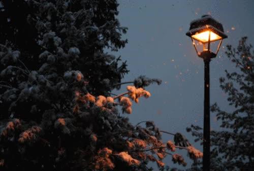 neige qui tombe, flocons, hiver, lampadaire