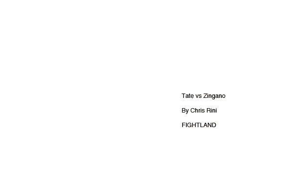 mixed martial arts, mma, Zingano Finishes Tate by Chris Rini for FIGHTLAND GIFs
