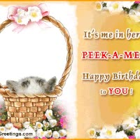 Watch and share Animated Happy Birthday, Happy Birthday, Keefers GIFs on Gfycat