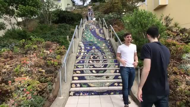 Watch and share 16th Ave Tiled Steps - The Moraga Street Stairs - A San Francisco Hidden Gem! GIFs on Gfycat