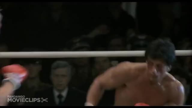 Watch To win, you gotta knock him out! GIF on Gfycat. Discover more Adrian, Rocky, blockbusters, boxing, paulie GIFs on Gfycat