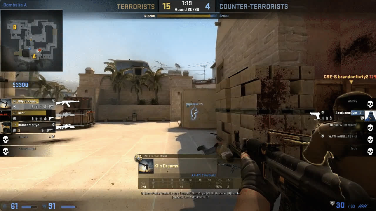 counterstrike, Sacrifice must be made to Win GIFs