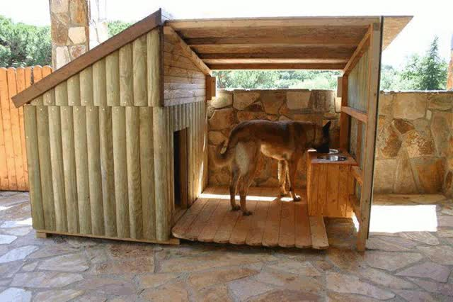 Watch and share Now That's A Dog House. : Pics GIFs on Gfycat