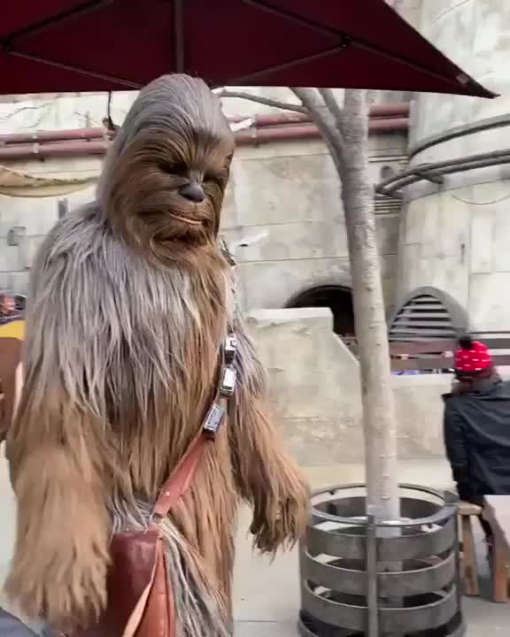 Watch and share Wholesome GIFs and Star Wars GIFs by tobago_88 on Gfycat