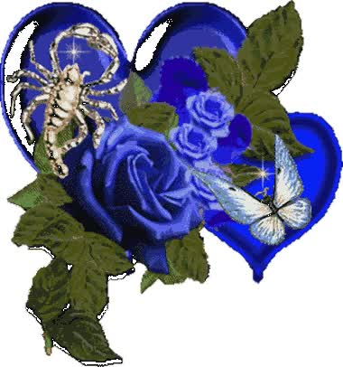 Watch and share Blue Roses animated stickers on Gfycat