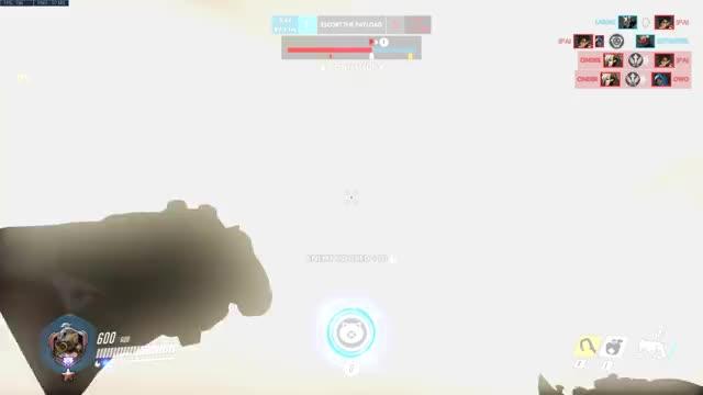 Watch and share Hog Hog Hog GIFs by ruggoe on Gfycat