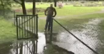 Watch and share Falling GIFs and Fence GIFs by misterjester13 on Gfycat