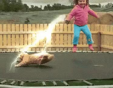 Watch unlimited GIF on Gfycat. Discover more related GIFs on Gfycat