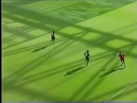 Watch and share Goal I GIFs by savomilosevic on Gfycat