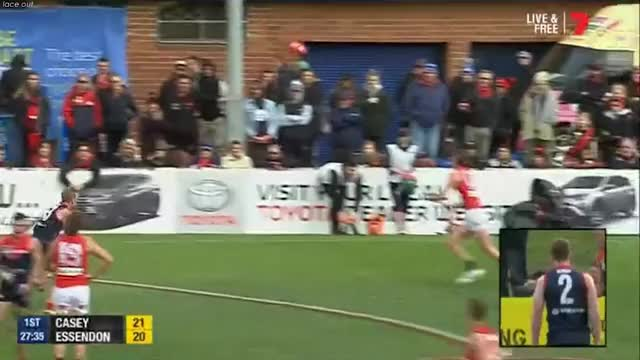 Watch and share Afl GIFs and Vfl GIFs by Lace out on Gfycat