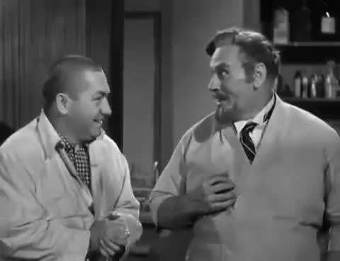 Watch and share Curly Howard GIFs on Gfycat