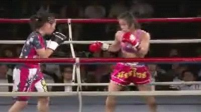 MMA, mma, tranypanda, wmma GIFs