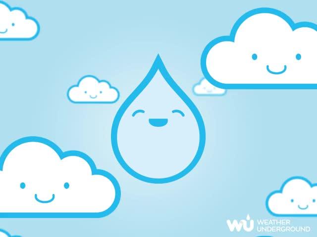 Watch and share Raindrop GIFs on Gfycat