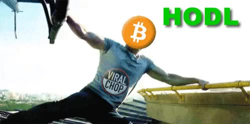 Watch hodl-hodling-bitcoin-litecoin-ethereum-ripple-cryptocurrency GIF by DCO Crypto (@dcocrypto) on Gfycat. Discover more Altcoins, Bitcoin, Cryptocurrency, Ethereum, Hodl, Hodling, Litecoin, Ripple GIFs on Gfycat