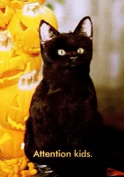 Watch and share Sabrina Salem The Teenage Witch Favim Com GIFs on Gfycat