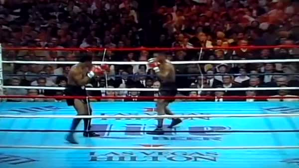 Watch www.SugarBoxing.com. Mike Tyson moving sideways and forward GIF by @sugarboxing on Gfycat. Discover more related GIFs on Gfycat