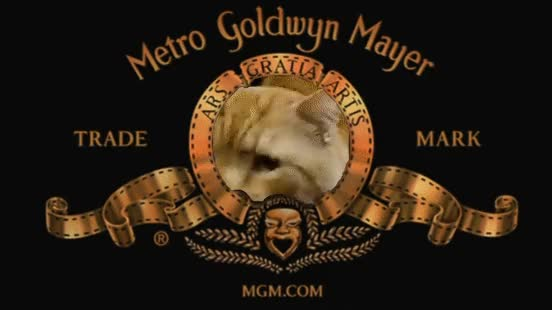 Watch and share Celebs GIFs and Mgm GIFs on Gfycat