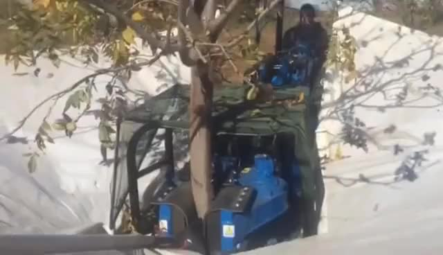 Watch and share Multione Harvester - Tree Shaker GIFs on Gfycat