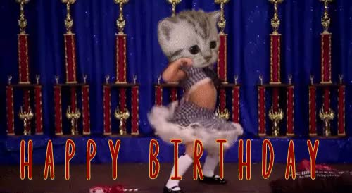 Watch and share Happy Birthday GIFs on Gfycat