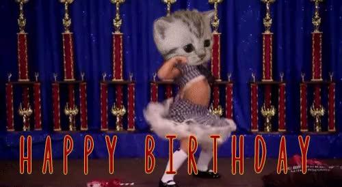 Watch this happy birthday GIF on Gfycat. Discover more TrollXChromosomes, happy, happy birthday GIFs on Gfycat