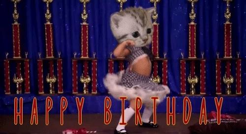 TrollXChromosomes, happy, happy birthday,  GIFs