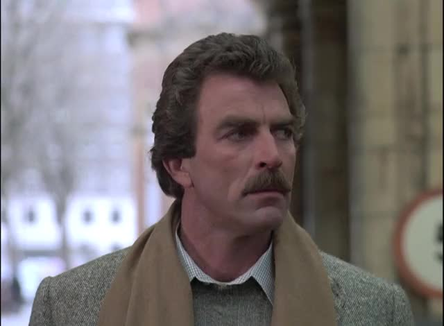 Watch and share Tom Selleck GIFs by stingwood on Gfycat