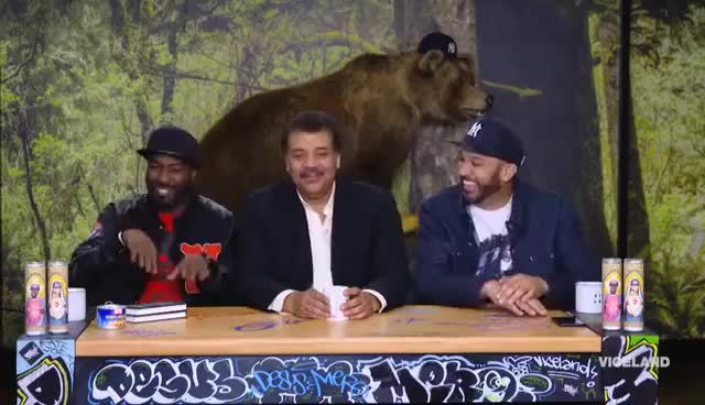 Watch Astrophysicist Neil deGrasse Tyson GIF on Gfycat. Discover more related GIFs on Gfycat