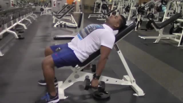 Watch INCLINE HAMMER CURLS GIF on Gfycat. Discover more related GIFs on Gfycat