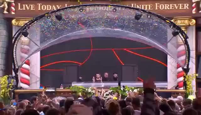 Watch and share Tomorrowland 2015   Matador GIFs on Gfycat