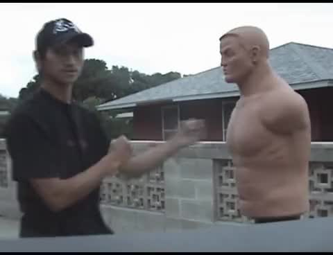 "Watch Techniques On How To Punch and Strike Fast ""Method One"" GIF on Gfycat. Discover more related GIFs on Gfycat"