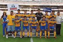 Watch and share Tigres GIFs on Gfycat